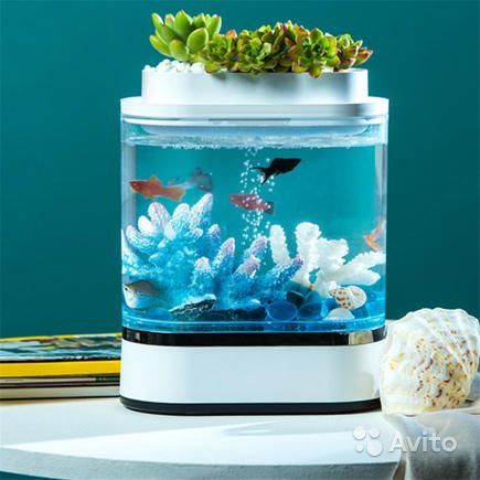 Акваферма xiaomi mini lazy fish tank купить на Зозу.ру - фотография № 1