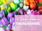 Франшиза продажи тюльпанов