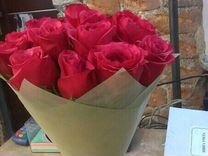 Цветы, комнатные растения, семена и саженцы - купить растения в ... 5544be334c5