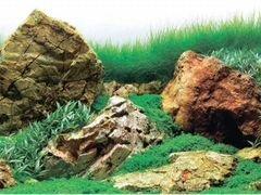 Фон для аквариума двусторонний
