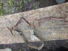 Косточки для лошади