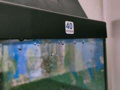 Аквариум террариум 40л для черепах и мелких рыб