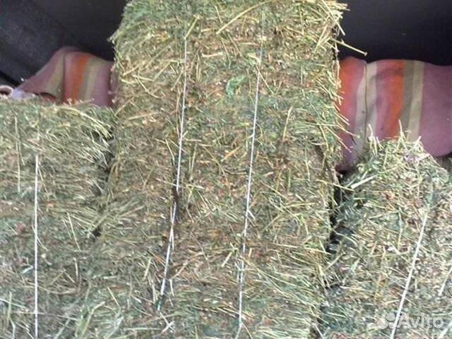 Купить сено для кроликов в иркутске