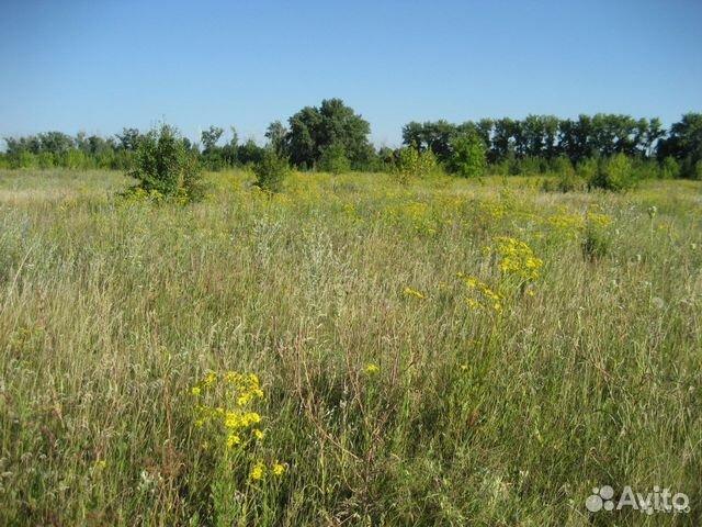 в аренду земли сельхозназначения в воронежской области Поглядим еще