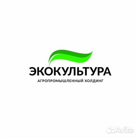 Работа в щёкино анна василевская