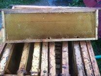 Рамки для пчел (сушь)