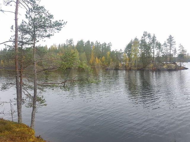 Участок финляндия в дубае самый высокий дом