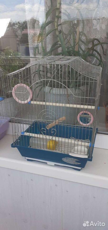 Клетки для волнистых попугайчиков