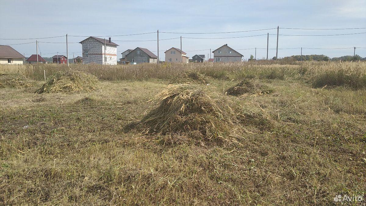 Сено (Скошенная трава)  89023544288 купить 1